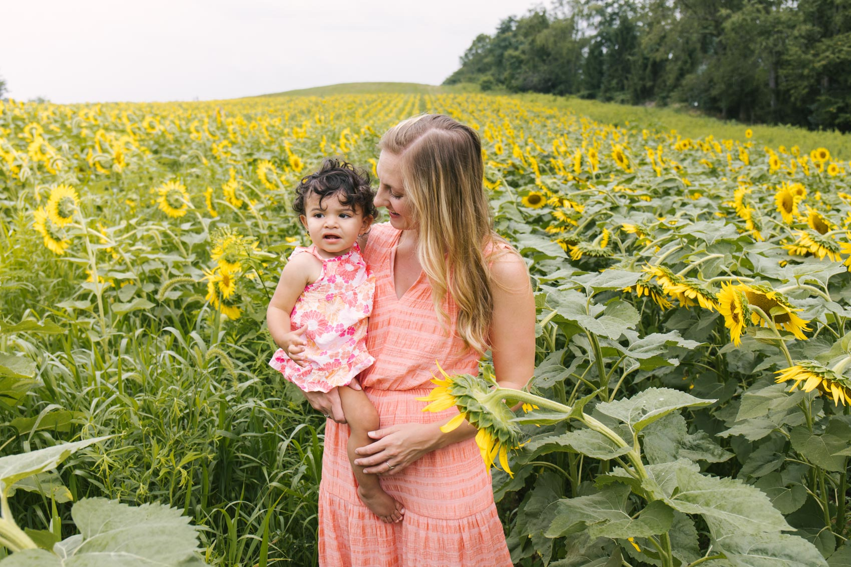 ideas on what to wear for sunflower field photos: coral outfits that coordinate