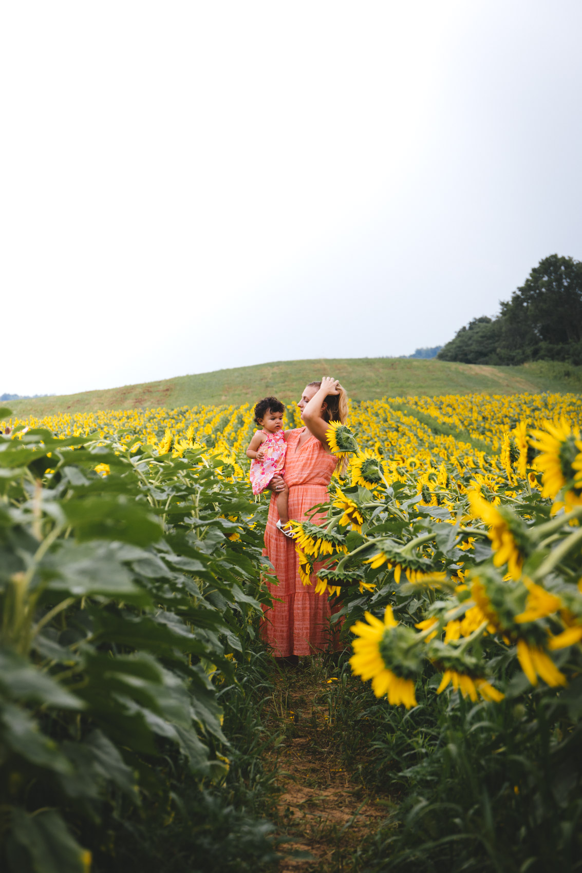 image of sunflower field photoshoot photography ideas for poses, outfits, and aesthetic | what to wear for sunflower field family pictures #sunflowerfield #sunflowerfieldphotoshoot